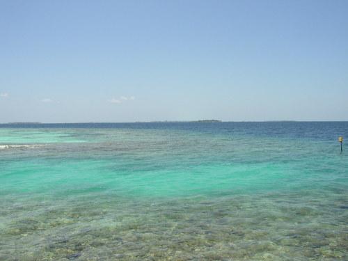 珊瑚&マーレ&リゾート島 マーレの街とリゾート島を撮ってみたけど小さくてよく分からず…。 珊瑚と